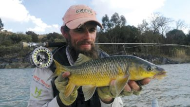 Photo of A day full of surprises on the Vaal river