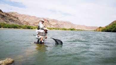 Photo of Travelling to the battlefield  – Fighting it on the Orange river