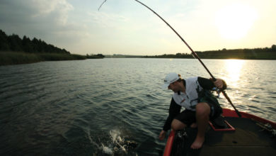 Photo of 10 Quick Tips To Become A Deep Water Spinnerbait Master