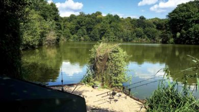 Photo of Vive La France – My Carping Dream