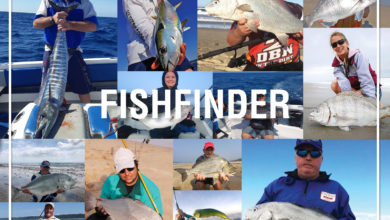 Photo of U. Fishfinder – September