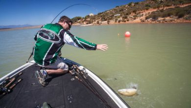Photo of Strategy For Finding Fish At New Venues