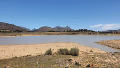 Photo of Heroldsdam en Georgedam