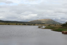 Photo of Bank Fishing For Bigger Carp: Renosterfontein In The Waterberg
