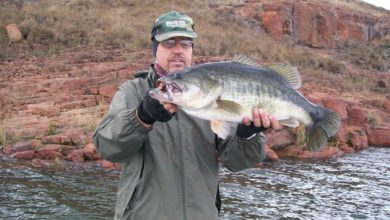 Photo of Hengel met 'n Spinnerbait in die Winter