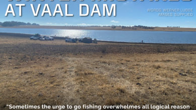 Photo of Q. Mistakes In The Vaal Dam