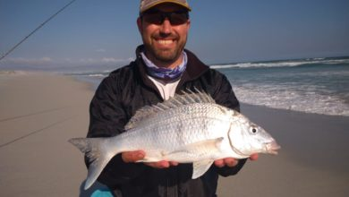 Photo of W. Guess this White Steenbras' mass and WIN an Adrenalin Fishing Tackle Hamper