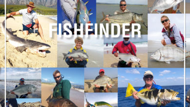 Photo of U. Fishfinder – August
