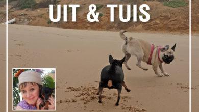 Photo of C. Uit en Tuis: Jou Beste Vriend By Die Viswaters