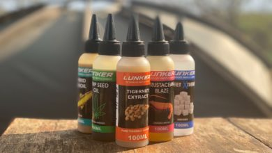 Photo of BAIT INSIGHTS: THE ATTRACTION OF OILS